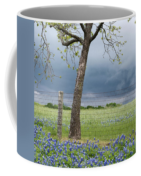 Bluebonnets Coffee Mug featuring the photograph Texas Spring Storm by Rospotte Photography