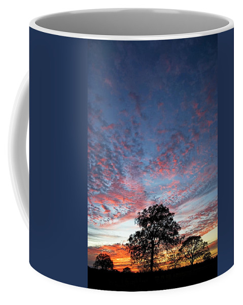 Tree Coffee Mug featuring the photograph Texas Sunset by Skip Hunt