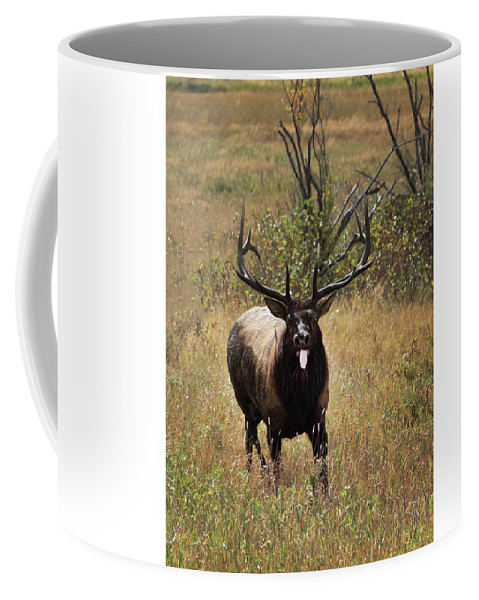 Tongue Coffee Mug featuring the photograph That Moment When by Shane Bechler