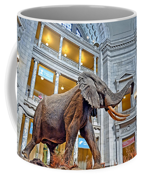 African Bush Elephant Coffee Mug featuring the photograph The African Bush Elephant In The Rotunda Of The National Museum Of Natural History by Jim Fitzpatrick