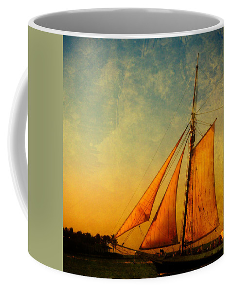 The America Coffee Mug featuring the photograph The America Nr 3 by Susanne Van Hulst