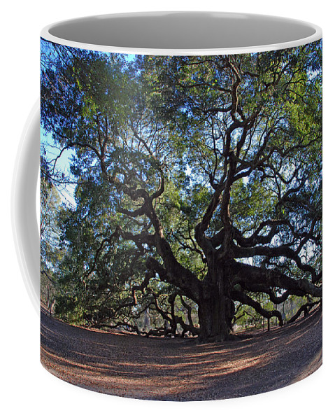 Photography Coffee Mug featuring the photograph The Angel Oak In Spring by Susanne Van Hulst