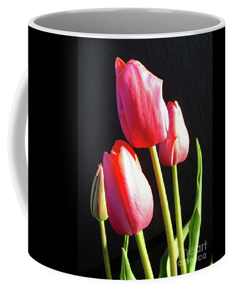 Tulip Coffee Mug featuring the photograph The Appearance Of Spring - Tulips by Cindy Treger