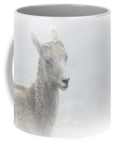 The Coffee Mug featuring the photograph The Baby Bighorn by Brian Gustafson