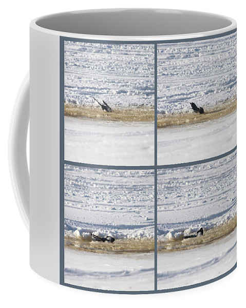 Lehtokukka Coffee Mug featuring the photograph The Bath Of A Magpie by Jouko Lehto