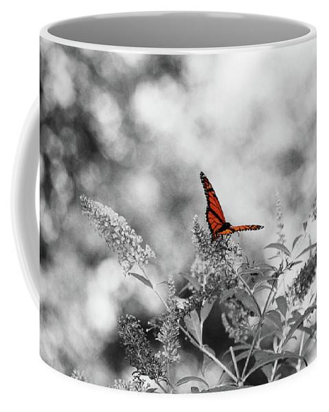 Monarch Coffee Mug featuring the photograph The Beauty Of Orange by Lori Tambakis