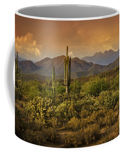 Sunset Coffee Mug featuring the photograph The Beauty Of The Sonoran Desert by Saija Lehtonen