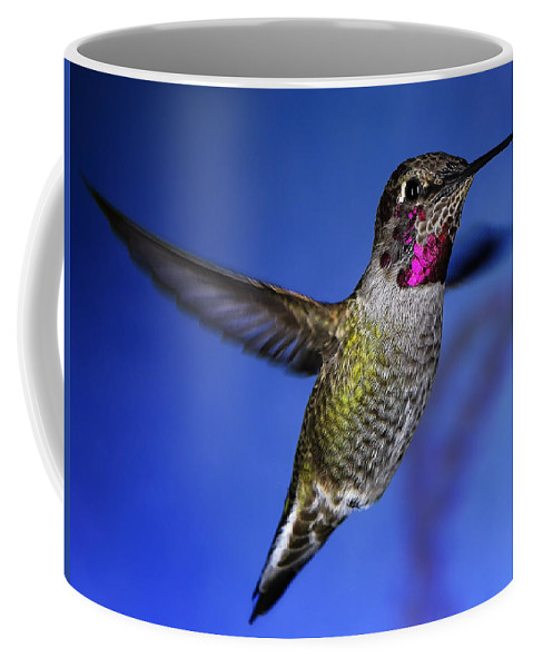 Birds Coffee Mug featuring the photograph The Best Feature by William Freebillyphotography