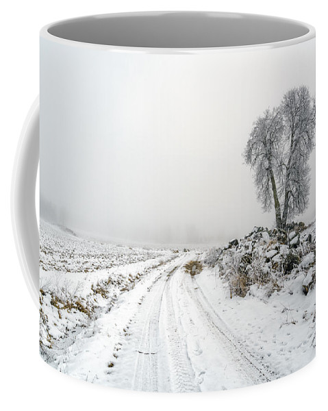 Acre Coffee Mug featuring the photograph The Birch by Ludwig Riml