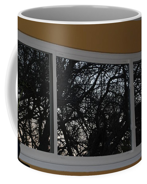 Window Coffee Mug featuring the photograph The Branch Window by Rob Hans
