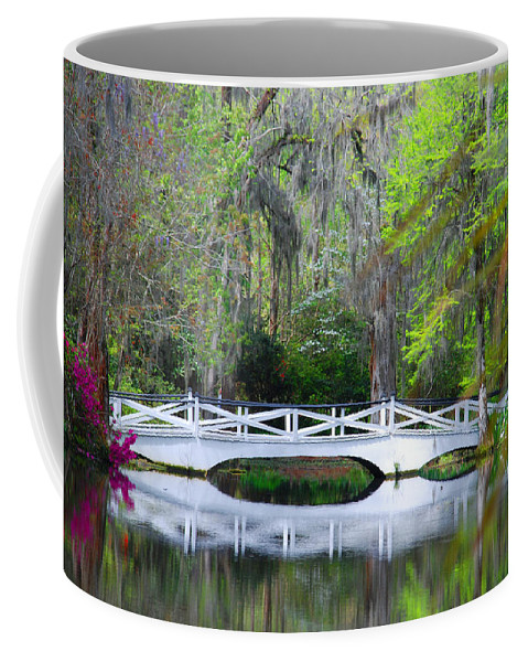 Photography Coffee Mug featuring the photograph The Bridges In Magnolia Gardens by Susanne Van Hulst
