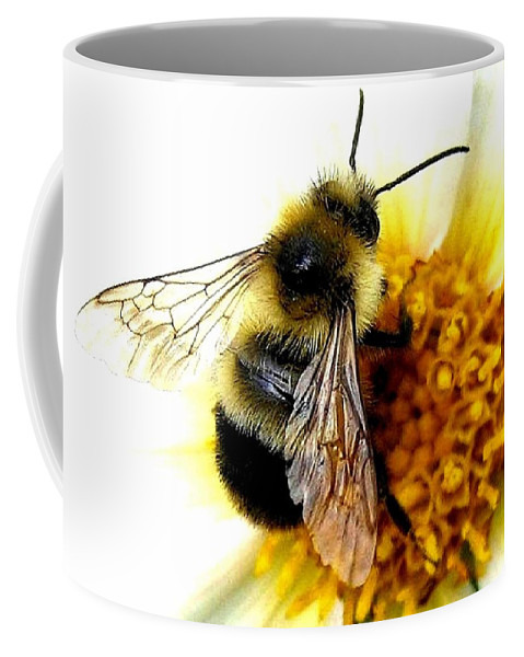 Honeybee Coffee Mug featuring the photograph The Buzz by Will Borden