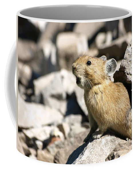 Animals Coffee Mug featuring the photograph The Call Of The Pika by DeeLon Merritt