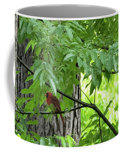 Bird Coffee Mug featuring the digital art The Cardinal In The Woods by Ed Stines
