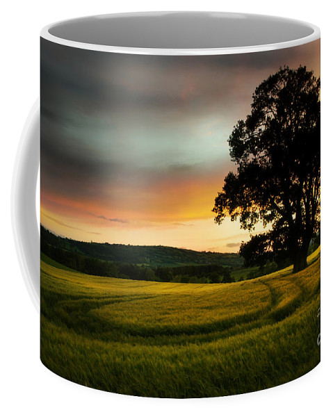 Tree Coffee Mug featuring the photograph The Circles On The Field by Angel Ciesniarska