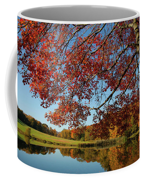 Colors Reflect Coffee Mug featuring the photograph The Comfort Of Autumn by Karol Livote