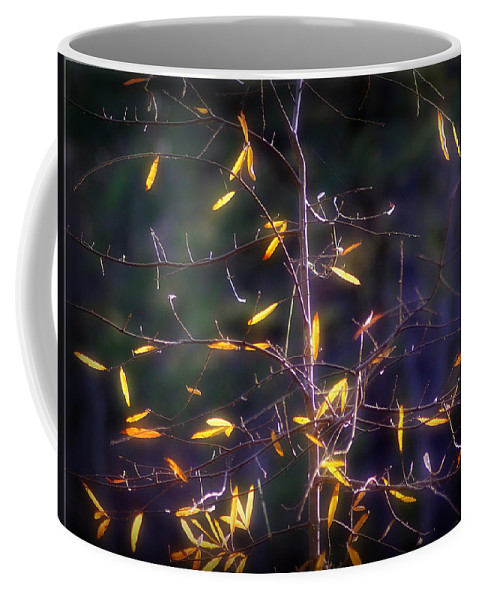 2d Coffee Mug featuring the photograph The Consistency Of Change by Brian Wallace