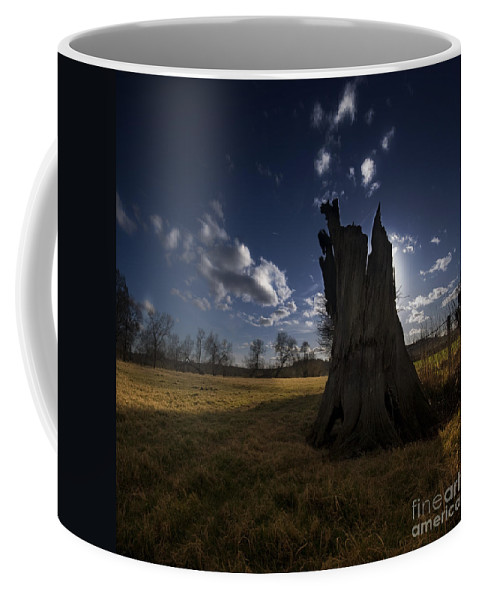 Landscape Coffee Mug featuring the photograph The Countryside by Angel Tarantella