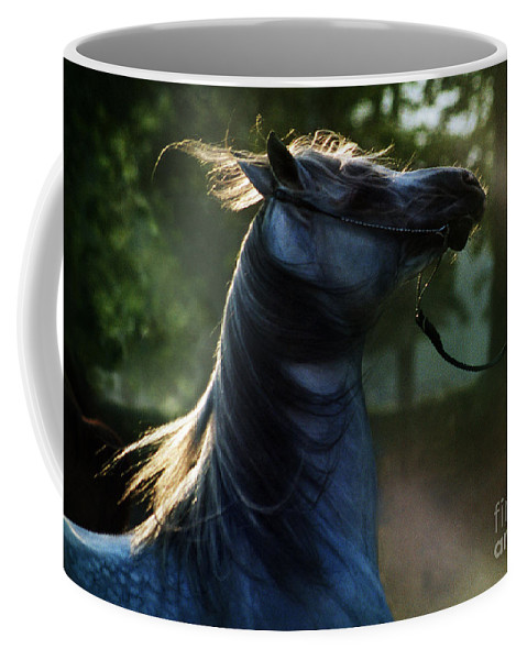 Sunset Coffee Mug featuring the photograph The Crazy Horse by Angel Tarantella