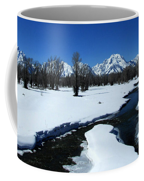 Nature Coffee Mug featuring the photograph Winters End by Janice Westerberg