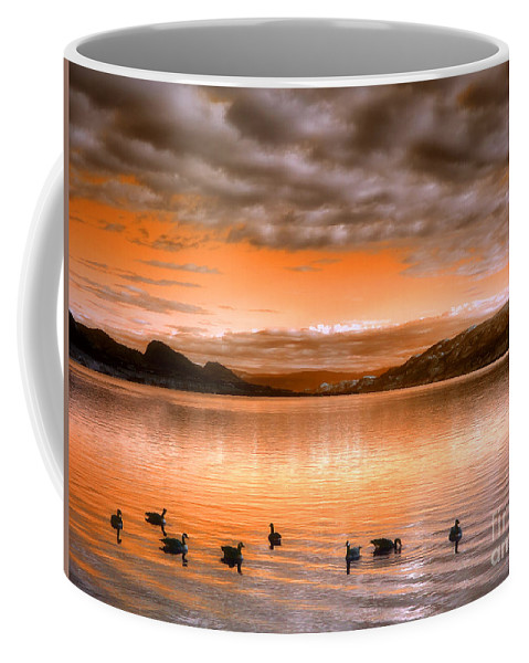 Clouds Coffee Mug featuring the photograph The Evening Geese by Tara Turner