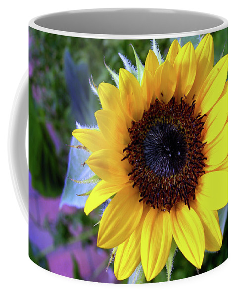 Flower Coffee Mug featuring the photograph The Eye Of The Flower by Skip Willits