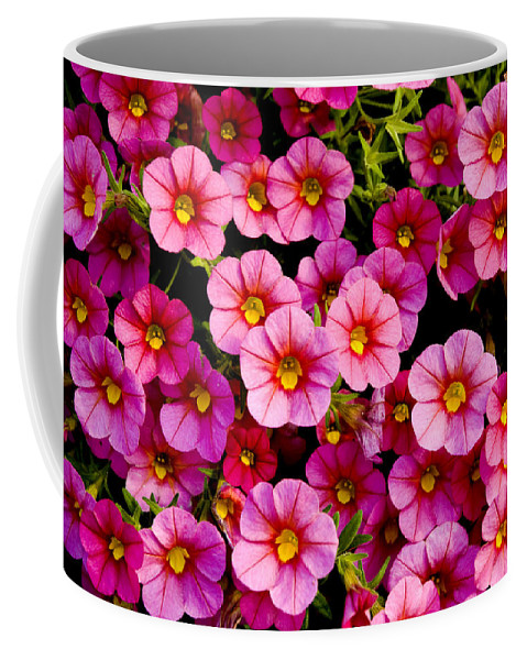 Flowers Coffee Mug featuring the photograph The Eyes by Greg Fortier