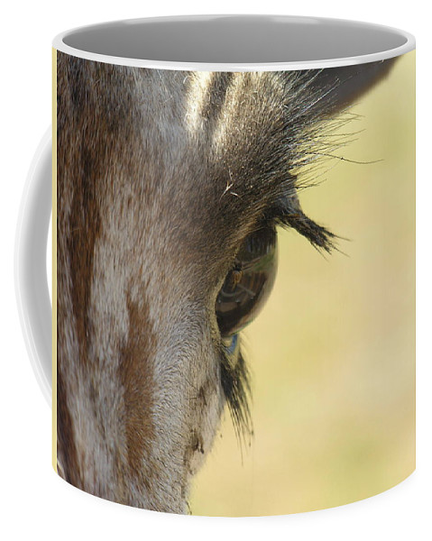 Giraffe Coffee Mug featuring the photograph The Eyes Have It by Diane Greco-Lesser