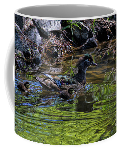 Wood Ducks Coffee Mug featuring the photograph The Emerald Aisle by Jim Garrison