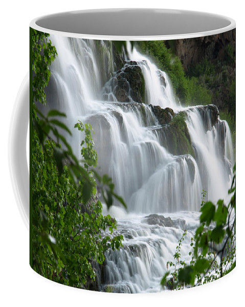 Water Coffee Mug featuring the photograph The Falls by DeeLon Merritt