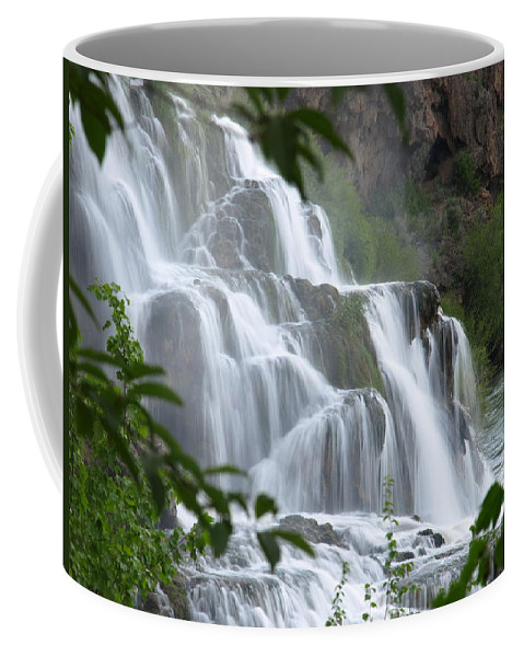 Water Coffee Mug featuring the photograph The Falls Of Fall Creek by DeeLon Merritt