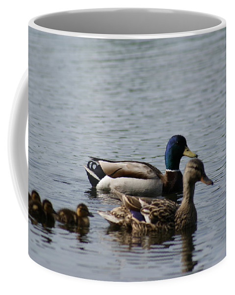 Birds Coffee Mug featuring the photograph The Family # 2 by Jegan G Raja
