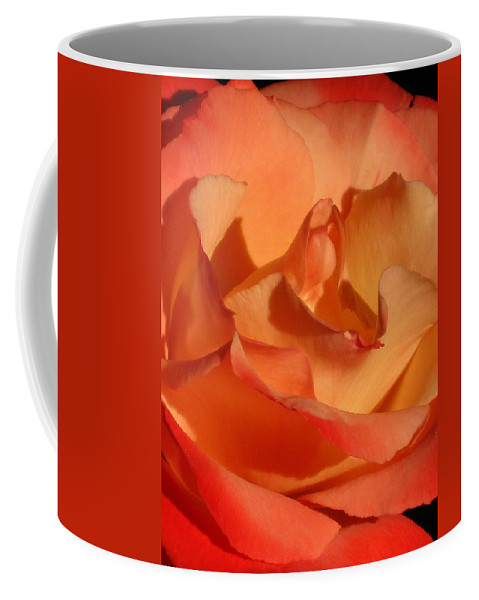 Rose Coffee Mug featuring the photograph The Final Rose Of Summer by Marla McFall