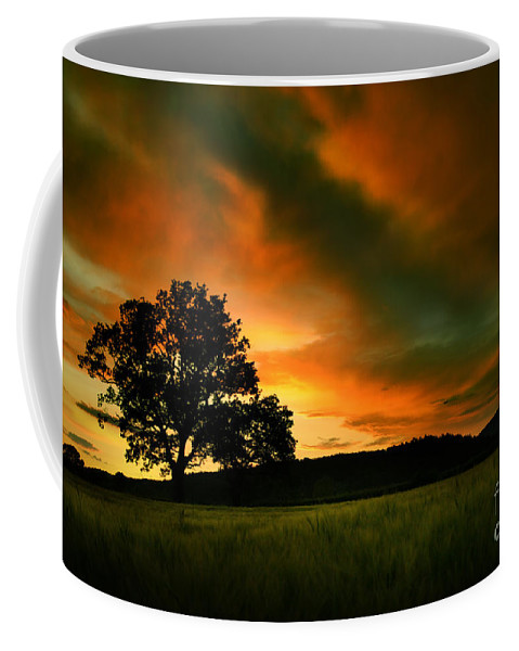 Sunset Coffee Mug featuring the photograph The Fire On The Skies by Angel Tarantella