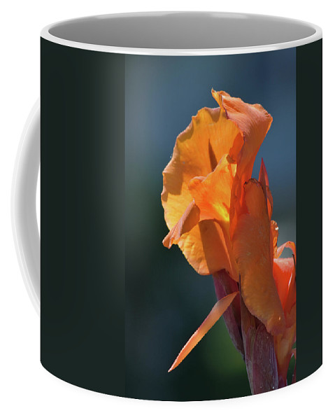 The Fire Within Coffee Mug featuring the photograph The Fire Within by William Tasker
