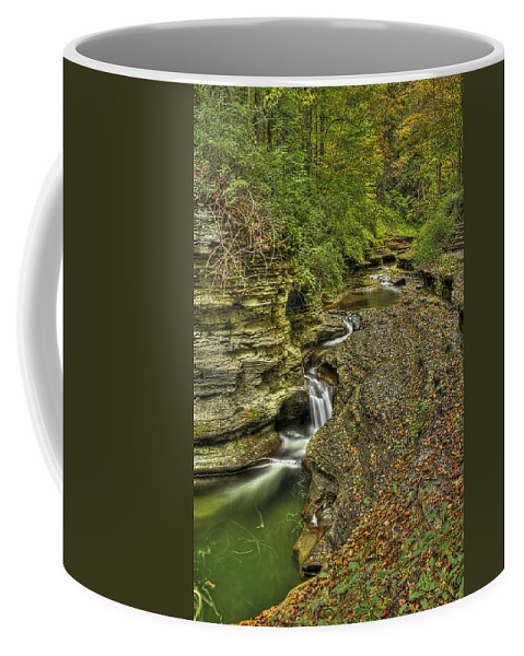 Water Coffee Mug featuring the photograph The Flow by Evelina Kremsdorf