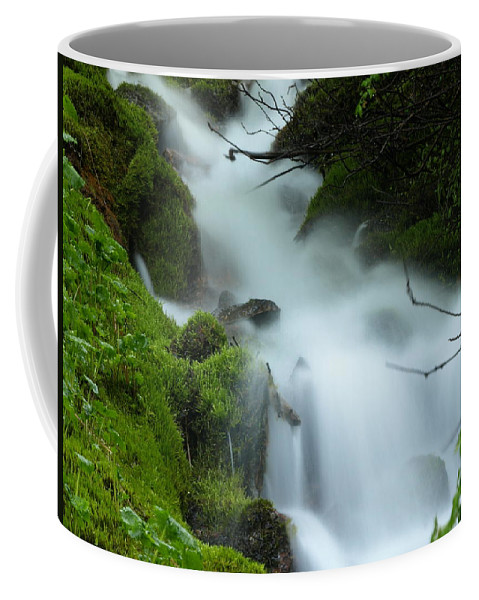 Water Coffee Mug featuring the photograph The Flowing Brook by DeeLon Merritt