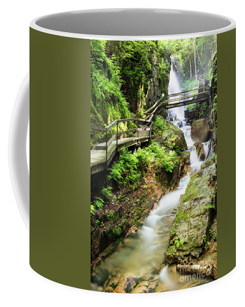 The Flume Coffee Mug featuring the photograph The Flume Gorge Lincoln New Hampshire by Dawna Moore Photography