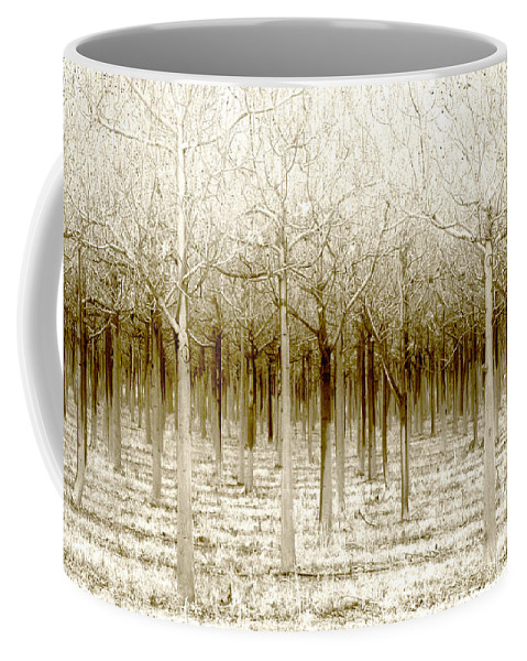 Landscape Coffee Mug featuring the photograph The Forest For The Trees by Holly Kempe