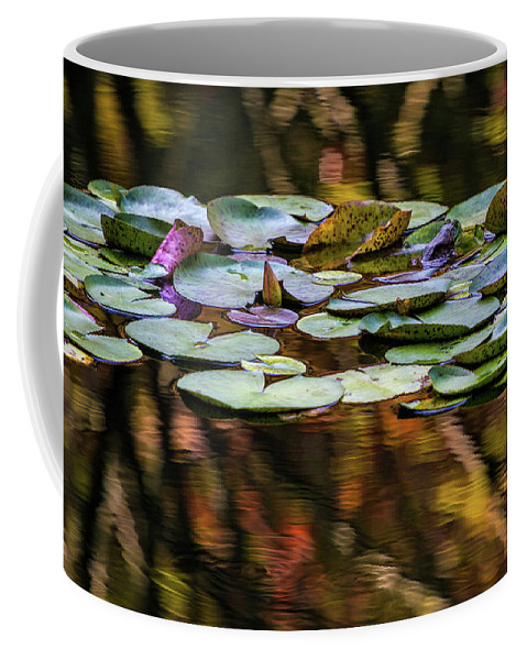 Gibbs Gardens Coffee Mug featuring the photograph The Frog And The Lilipads by Doug Sturgess