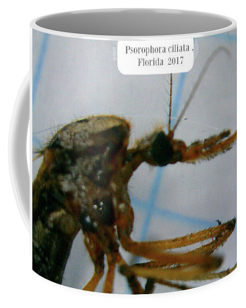 Insect Coffee Mug featuring the photograph The Gallon Nipper by Barbara Searcy