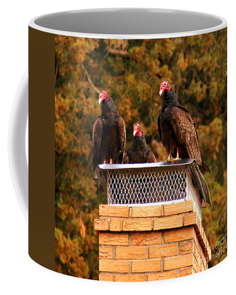 Clay Coffee Mug featuring the photograph The Gathering Of Vultures by Clayton Bruster
