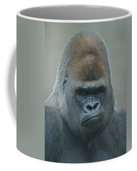 Animals Coffee Mug featuring the photograph The Gorilla 4 by Ernie Echols