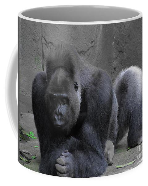 Gorilla Coffee Mug featuring the photograph Western Lowland Gorilla by RLH Photography