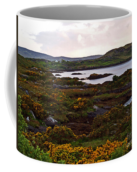 Fine Art Photography Coffee Mug featuring the photograph The Gorse It Was Abloomin by Patricia Griffin Brett