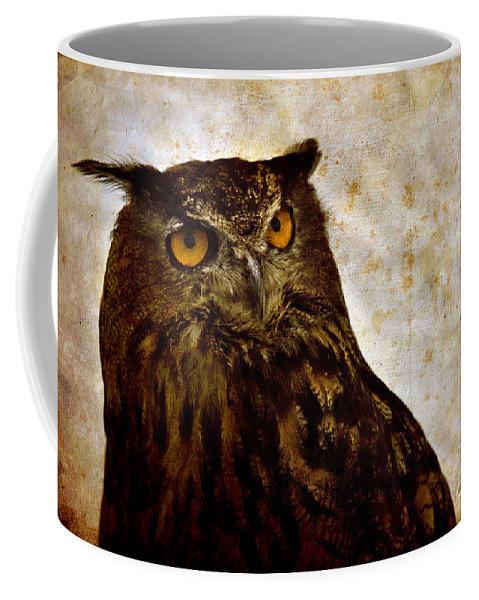 Great Owl Coffee Mug featuring the photograph The Great Owl by Angel Ciesniarska