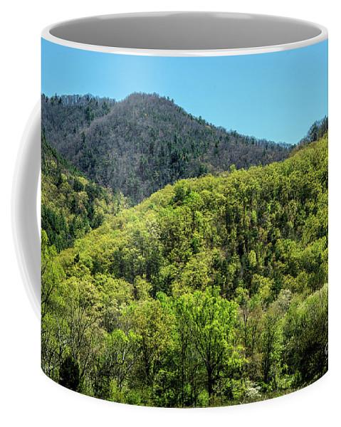 Appalachian Mountains Coffee Mug featuring the photograph The Greening Of Spring by Bernd Billmayer