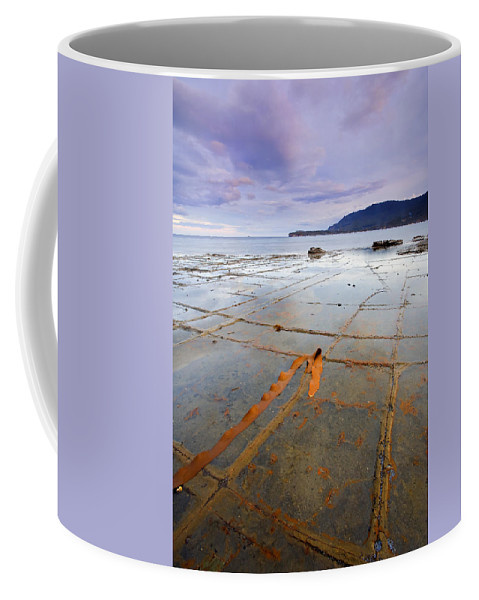 Tesselated Pavement Coffee Mug featuring the photograph The Grid by Mike Dawson