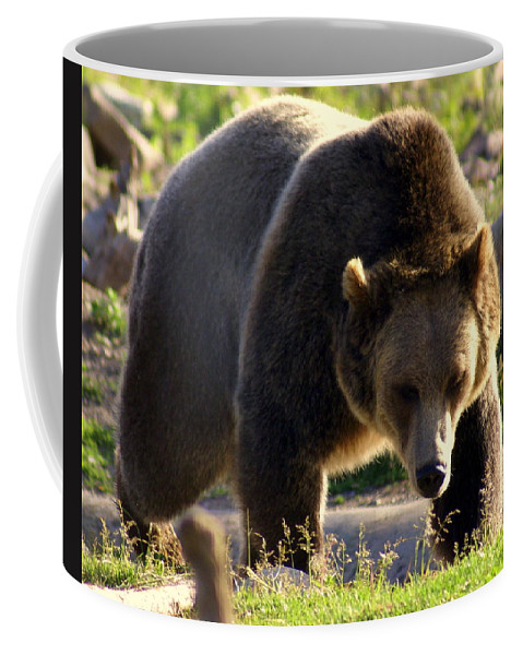 Grizzly Bear Coffee Mug featuring the photograph The Grizz by Marty Koch