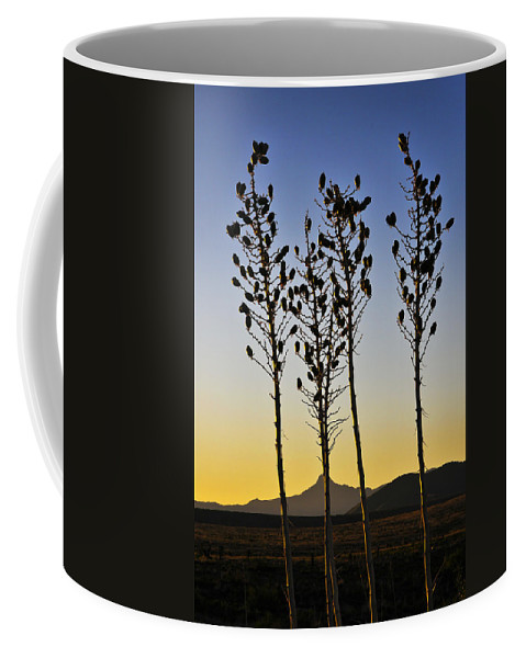 The Guild Coffee Mug featuring the photograph The Guild by Skip Hunt